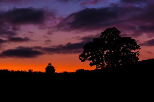 Sunset at Burrowhayes Farm